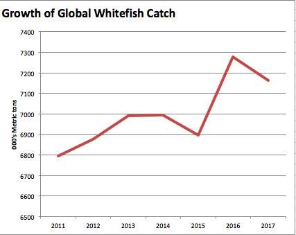 Global Whitefish Supply Predicted to Decline Slightly in 2017; Led by Atlantic Cod
