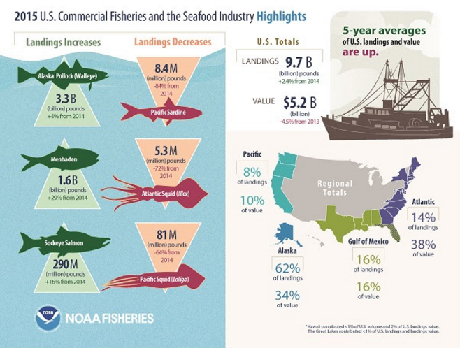 NOAA Says Seafood Consumption Heading in Right Direction in US, as 2015 Per Capita Number Jumps