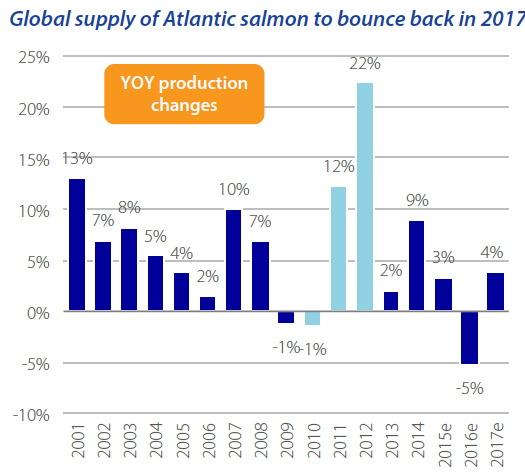 Rabobank Commodity Outlook Sees Strong Salmon, Shrimp Markets; Lower Fishmeal Prices
